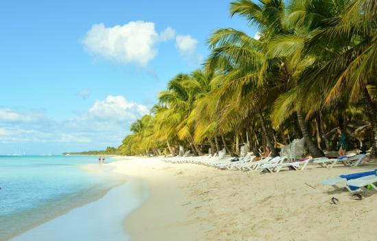 Parque Nacional del Este, Dominikana: Saona Boat Trip