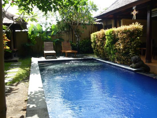 Kubu Diuma Villa : Zwembad en tuin