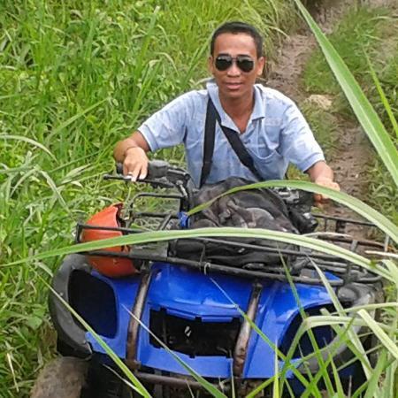 Bali Nature Holiday - Tur Harian