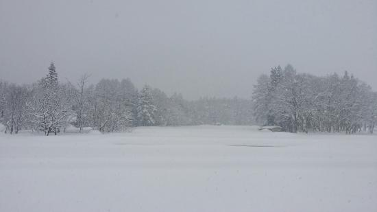 Heidi Hof : View from our hotel window on a very snowy day!