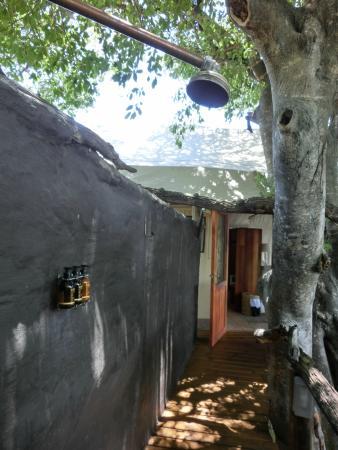 Little Tubu: Outdoor shower