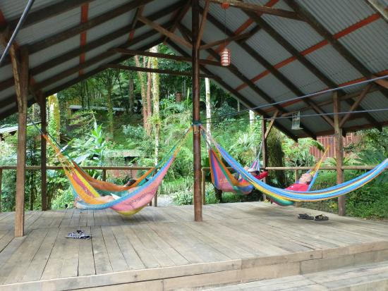 Rios Tropicales Lodge: day use area