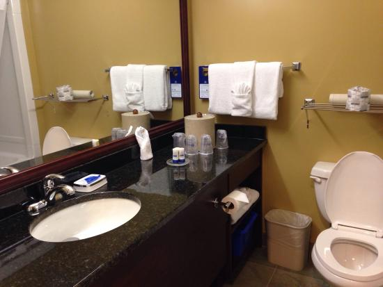 Best Western Plus Grand-Sault Hotel & Suites: Bathroom