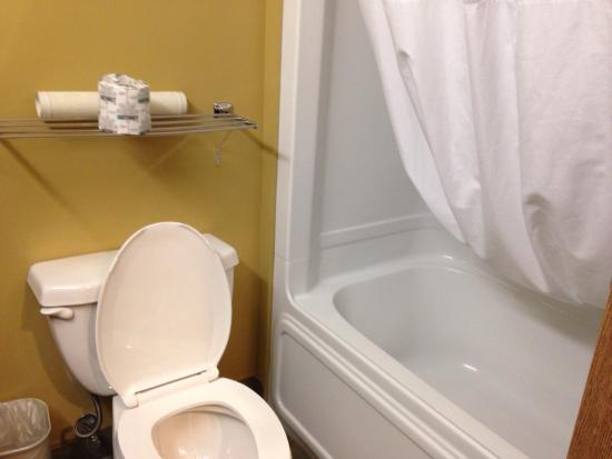 Best Western Plus Grand-Sault Hotel & Suites: Tub