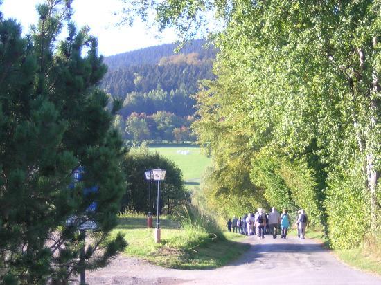 Lauter-Bernsbach, Deutschland: Wandergruppe unterwegs