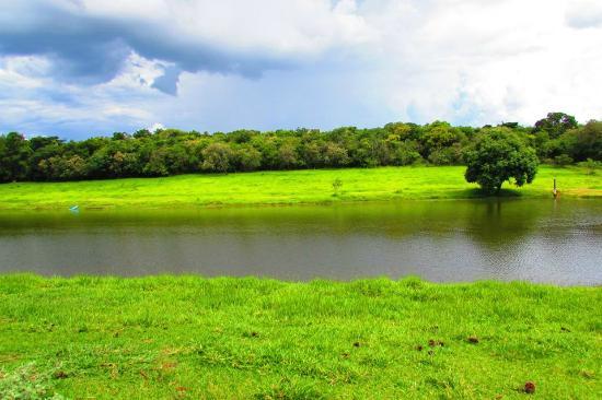 Hotel Vale das Aguas : Lago