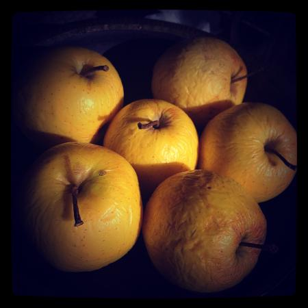 Banjara Camps - Thanedar: Apples from the orchards...