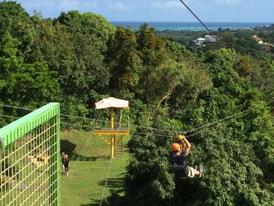 Rain Forest Zipline Corp.: Among the first series of lines- amazing view from platform