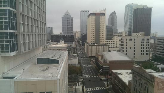 Floridan Palace Hotel: The view