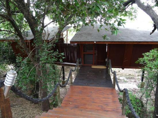 RiverDance Lodge : Weg zum Bungalow Nr. 5