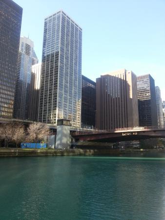 desde mi ventana picture of sheraton grand chicago. Black Bedroom Furniture Sets. Home Design Ideas