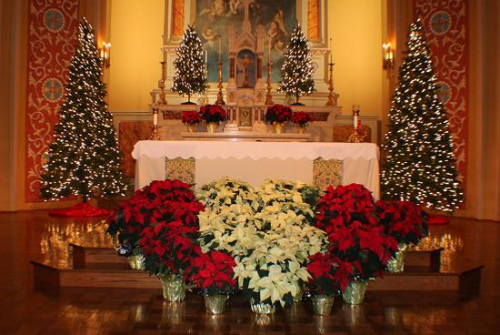 National Shrine Of Our Lady The Miraculous Medal Main Altar Christmas Decorations