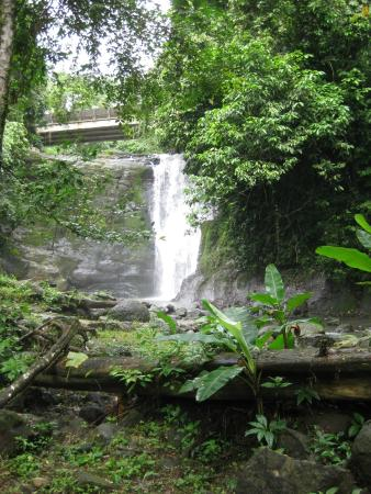 Gecko Trail Adventures Animal Rescue Centre, Chocolate Lady and Waterfall Tour: waterfall