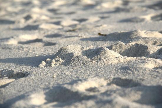 Kuramathi: White Sand