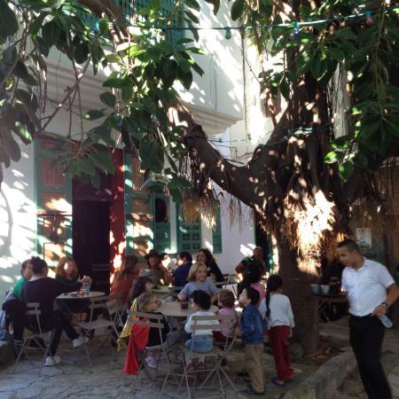 El Morocco Club: La terrasse sous le ficus...!!!