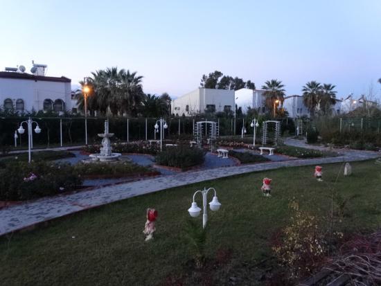 Sentinus Beach Hotel: the garden