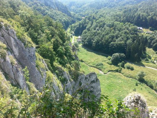 Ojcow National Park, Poland: Widok z miesca tuż powyżej jaskini (taras widokowy)