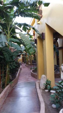 El Encanto Inn & Suites Boutique Hotel : Garden view rooms