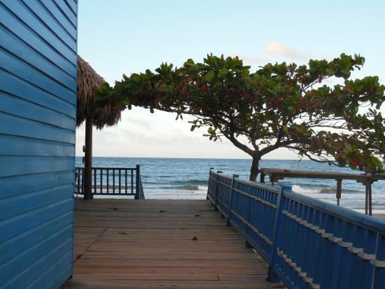 Telamar Resort: Camino al playa
