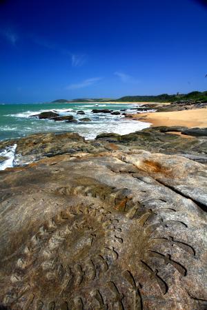 Fotos das praias paraibanas 59