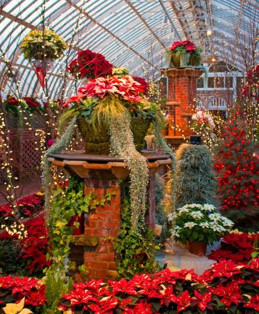 One Of The Inside Rooms Picture Of Phipps Conservatory And Botanical Gardens Pittsburgh