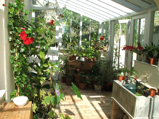 Lee, UK: conservatory