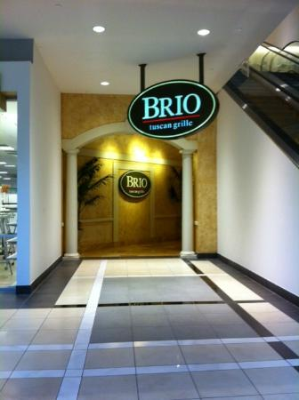 BRIO Tuscan Grille: Indoor / Mall entrance