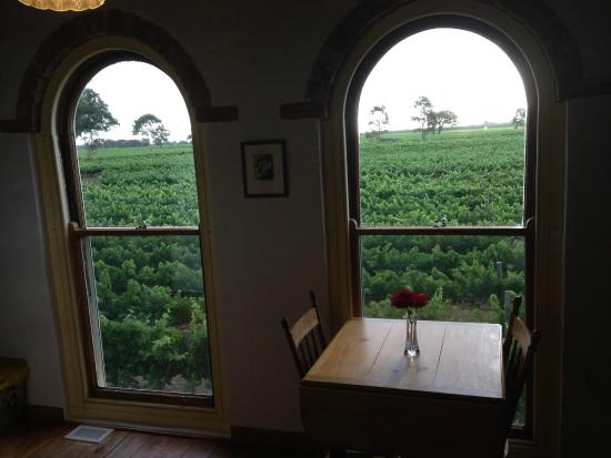 Highbank Winery Accommodation : room with a view