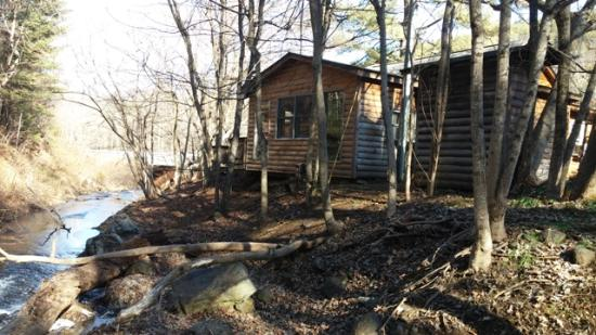 Brookside Cabins : Back of Cabin 8 and creek