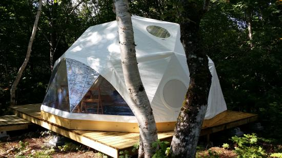 ‪‪Cabot Shores Wilderness Resort‬: Geodesic Dome nestled among the trees‬