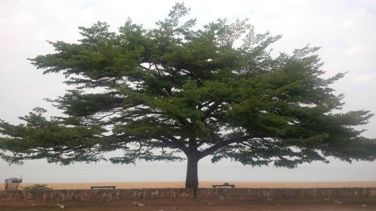 Restaurant Tanganyika : View of public beach