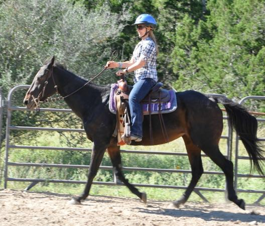 The Sugar & Spice Ranch: My therapy