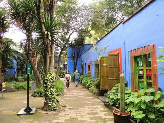 Patio De La Casa Azul Picture Of Frida Kahlo Museum