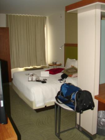 SpringHill Suites Pittsburgh Bakery Square: King Bed