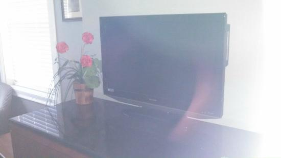 Crescent Suites Hotel: A television next to flowers.