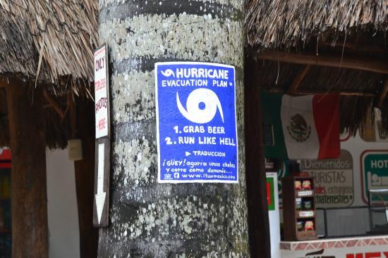 Itour Mexico: itour4