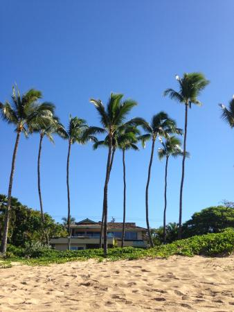 Dolphins Point Maui: View of location from the beach!!