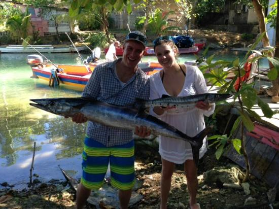 The boats picture of sunshine watersport tours ocho for Jamaica fishing charters