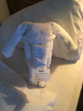 Hotel Alexandra: The elephant towel