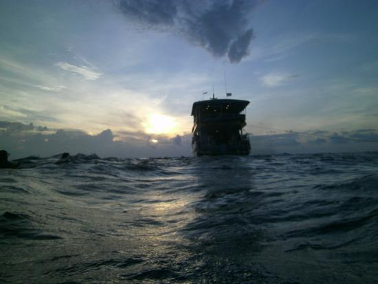 Oktavia Dive Center : ons schip na een schemerduik