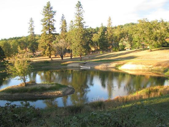 Delfino Vineyards B&B : The Lake