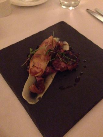 St Kyrans Country House & Restaurant: Mallard