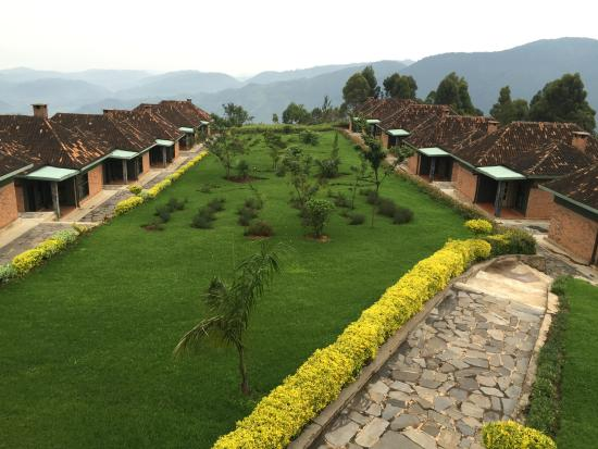Nyungwe Top View Hill Hotel: View from the restaurant terrace!