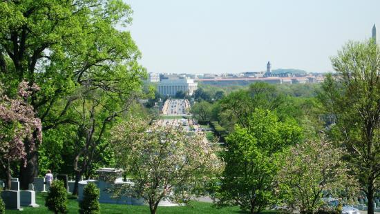Alexandria National Cemetery: Juste avant la floraison des cerisiers...