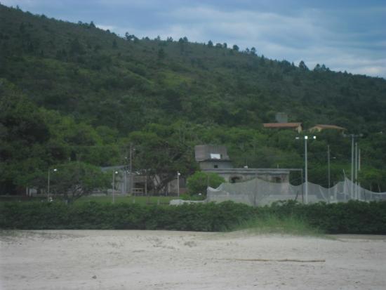 고베나르도 셀소 라모스 사진