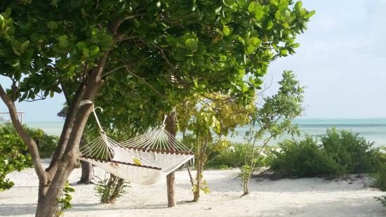 كيسيوا أون ذا بيتش: Kisiwa on the beach