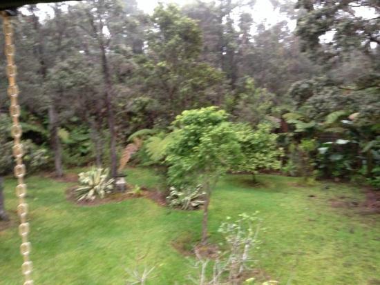Chalet Kilauea: Outide_1