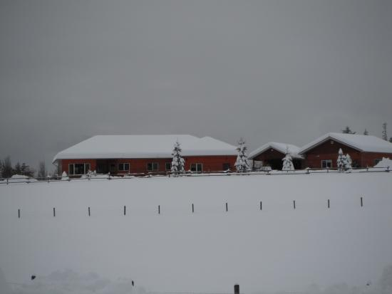 Brouse Creek B&B: Winter arrived