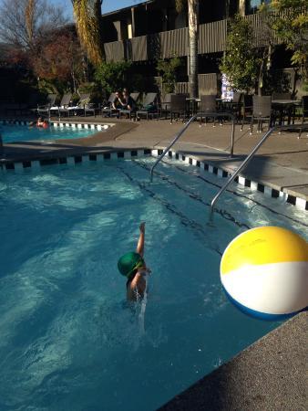 Dinah's Garden Hotel: Swimming pool