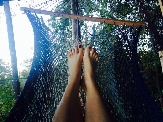 Blue Jay Lodge: Hammock time on our private porch!